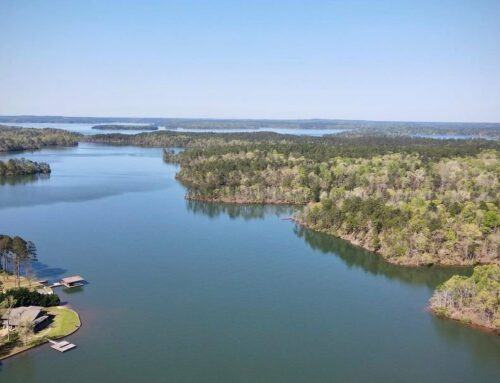Participate in a scavenger hunt on Lake Martin on May 15
