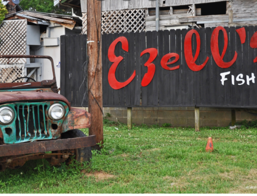 Find the best fried catfish and coleslaw at Ezell's Fish Camp