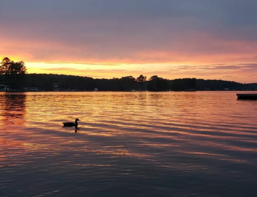 A local's guide to spending a weekend at Lake Martin
