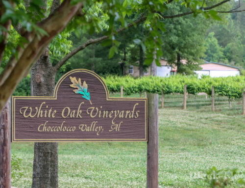 The North Alabama Wine Trail is the coolest thing you can do this summer